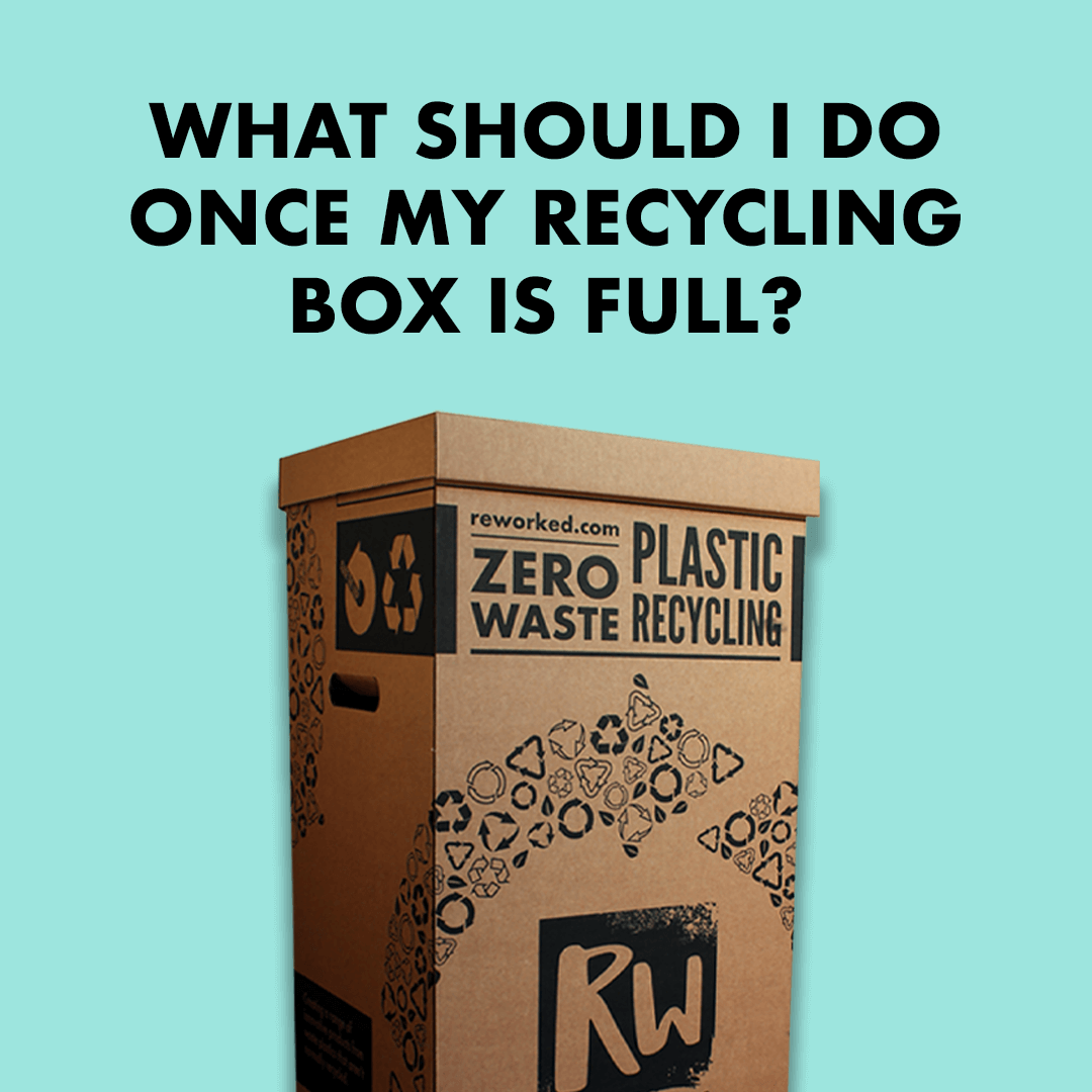 What should I do once my recycling box is full? ReWorked