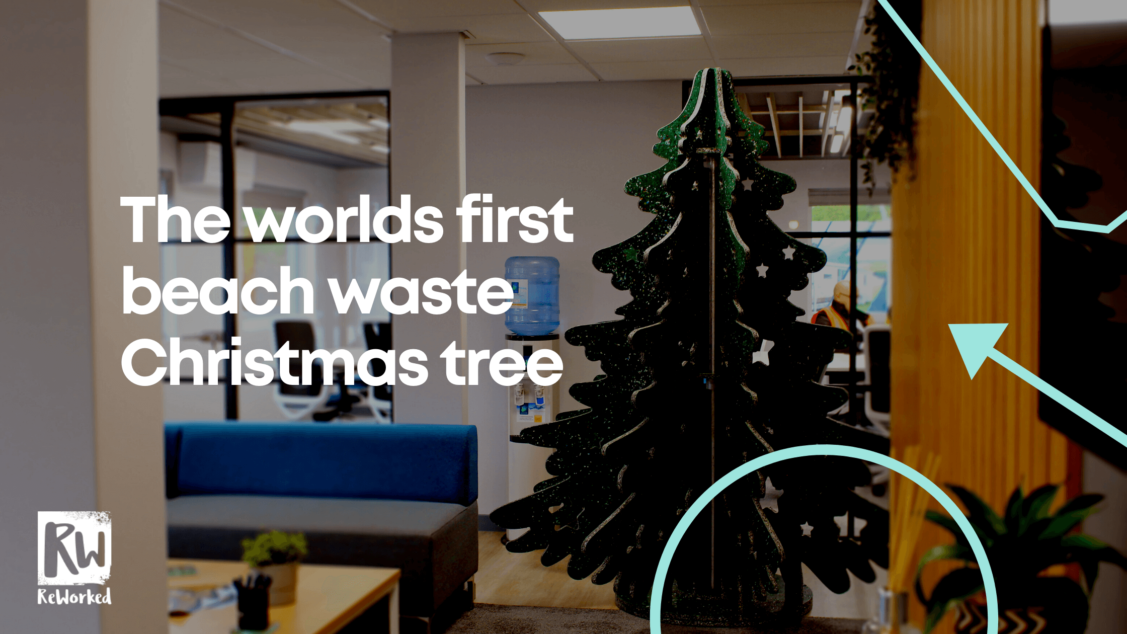 The worlds first beach waste Christmas tree